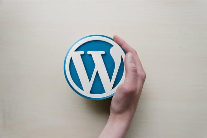 3 Essential WordPress Tips for Launching a Successful Website in 2019