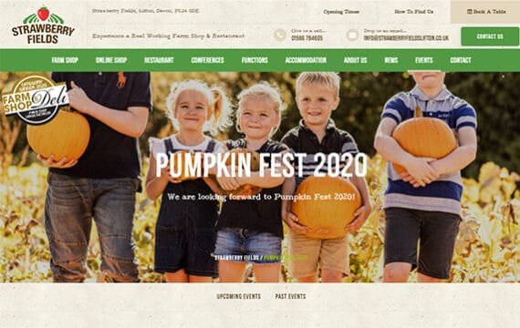 Strawberry Fields - Pumpkin Fest 2020