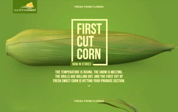 First Cut Corn